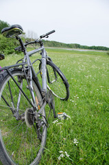 Bicycle in nature.