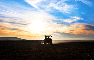 Fototapete - Tractor plows a field in the spring accompanied by rooks Tractor. Sunset