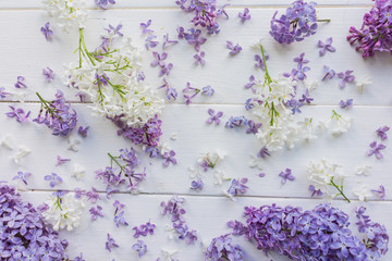Twigs and small buds of lilac on white-painted wooden boards. Shabby chic. The theme of spring, summer. Top view. Bright and light background for postcards, banners, invitations, typographic item.