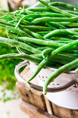 Bunch of fresh green beans in white metal colander on weathered wood garden box, herbs, clean eating, healthy food, Provence style
