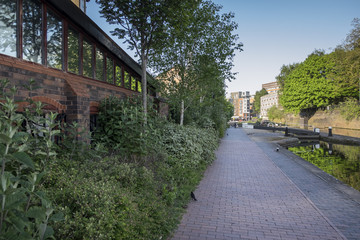Canal path in Birmingham city centre, in the summer, with plentiful green foliage growing along the path