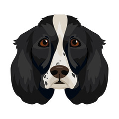 Vector english cocker spaniel face dog breed icon domestic animal symbol of 2018 new year