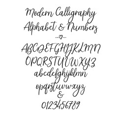 Hand drawn alphabet. Brush painted letters: lowercase and uppercase. Numbers and ampersand. Font isolated on white. Typography alphabet for your design: logo, web banner, wedding decor, invitation.