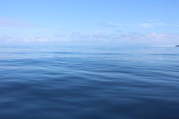 Barents sea