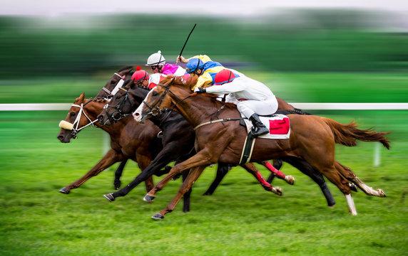 Race horses with jockeys on the home straight