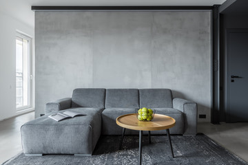 Living room with gray sofa