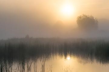 Świt nad wodą - fototapety na wymiar