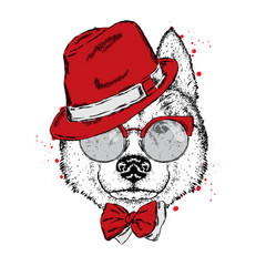 A beautiful dog in a hat, glasses and a tie. Vector illustration for a postcard or poster, print on clothes. Purebred puppy. Husky or wolf.