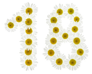 Arabic numeral 18, eighteen, from white flowers of chamomile, isolated on white background