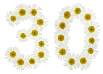 Arabic numeral 30, thirty, from white flowers of chamomile, isolated on white background