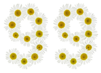 Arabic numeral 99, ninety nine, from white flowers of chamomile, isolated on white background