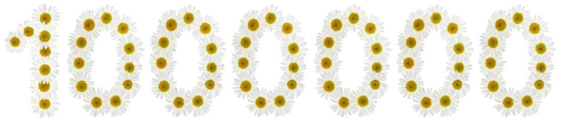 Arabic numeral 1000000, one million, from white flowers of chamomile, isolated on white background