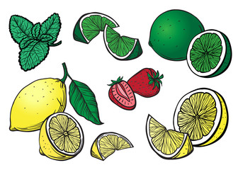 Engrave isolated lemon lime and strawberry hand drawn graphic vector illustration set collection