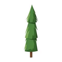 cartoon pine tree trunk nature icon vector illustration