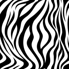 Zebra black and white strips  seamless pattern. vector illustration isolated on white background. Animal skin print texture.