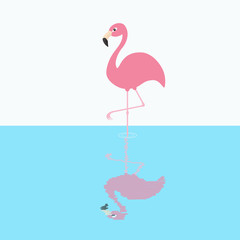 Pink flamingo standing on one leg. Circles on the water shadow. Exotic tropical bird. Zoo animal collection. Cute cartoon character. Decoration element. Flat design. White blue background.