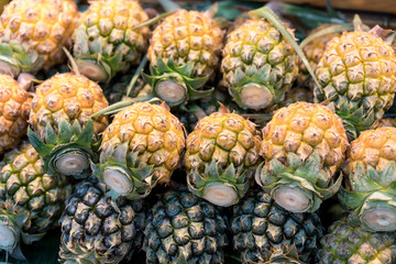 Fresh and ripe pineapples