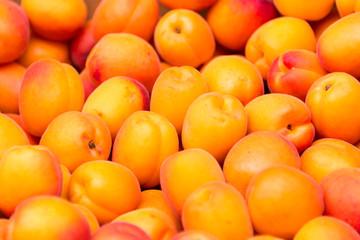 Apricots background, close up of apricots on a market