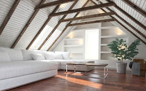 Attic living room concept