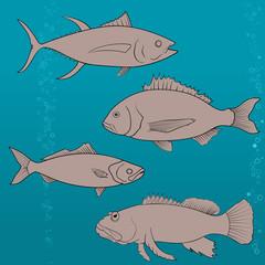 fish icons set. Outline illustration