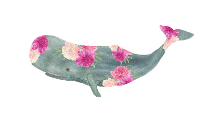 Watercolor painting sperm whale with peony flowers. Artwork for prints, greeting cards