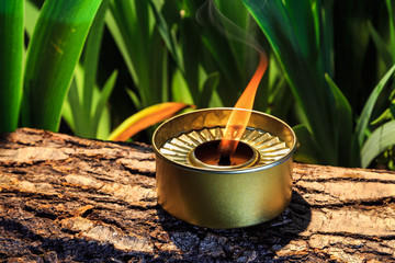 burning candle on the background of a beautifully lit tropical plants
