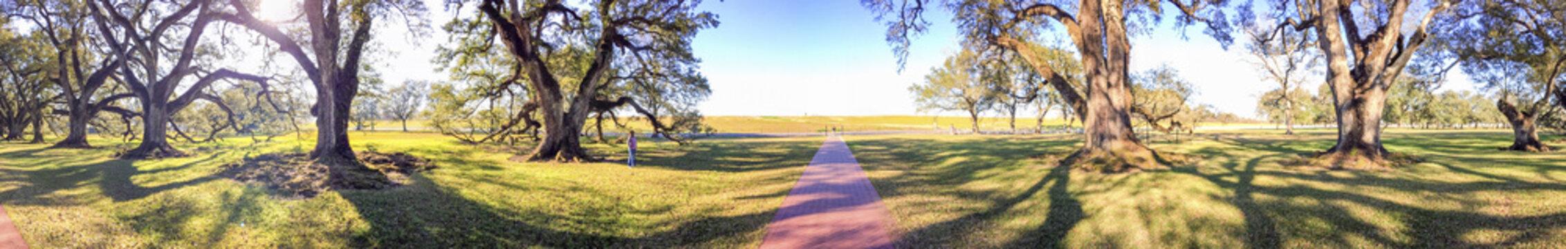 Oak Alley Plantation panoramic view, Louisiana
