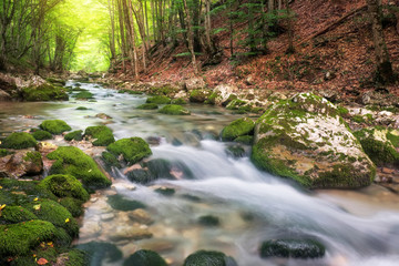 River in mountain in summer. Water stream at forest. Composition of nature