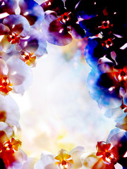 flower on abstract color background. Orchid flower.