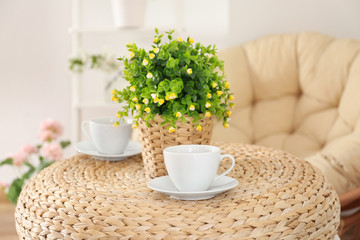 Two cups of tea and beautiful house plant on table at home