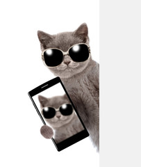 Cat in sunglasses with smartphone peeking above white banner and taking a selfie. Isolated on white background
