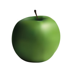 Vector realistic green apple isolated on white background