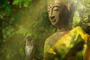 Buddha in natural background, peace to the world concept, double exposure with vintage lighting style