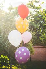 Balloons in a garden