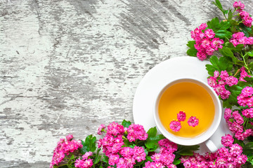 cup of summer flower tea with pink blossoming branches over white rustic wooden background