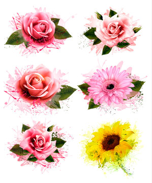 Set of greeting cards with defferent flowers. Vector