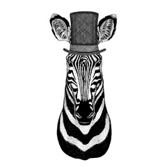 Zebra Horse wearing cylinder top hat