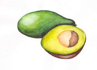 Ripe avocado half and whole. Hand-drawn watercolor illustration.