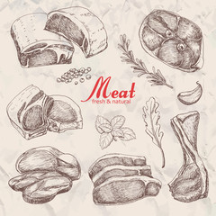Set of hand drawn meat isolated