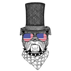 Bulldog wearing cylinder top hat and glasses with usa flag United states of America flag