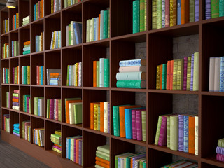 Wooden racks with different books. Library. 3d illustration.