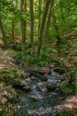 Bodetal Harz Sagenharz