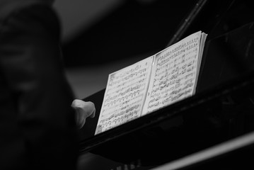 Playing musician at the classical concert