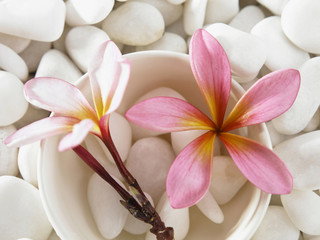 top angle of flower and pebbles with stone background
