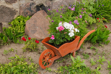 Schubkarre, Blumen, wheel barrow, flowers