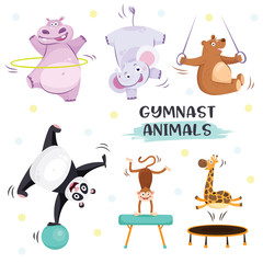 Cute animals in sport gymnastic positions. Sportsman flat icons isolated on white background. Kids illustration