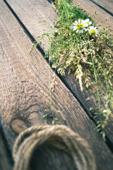 Plants and flowers on a wooden background with a rope.