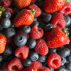 A Serving of Fresh Strawberries, Raspberries and Blueberries in Germany, Europe