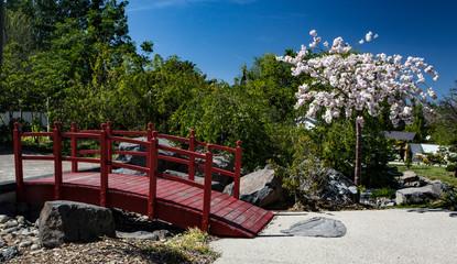 Jardin Japonais au Printemps