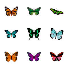 Realistic Danaus Plexippus, Callicore Cynosura, Green Peacock And Other Vector Elements. Set Of Moth Realistic Symbols Also Includes Cynosura, Tropical, Malachite Objects.